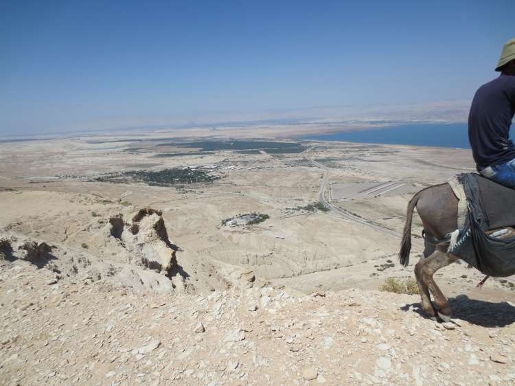 High Above Qumran -- that's the visitor's center in the middle and some of the caves just beneath it